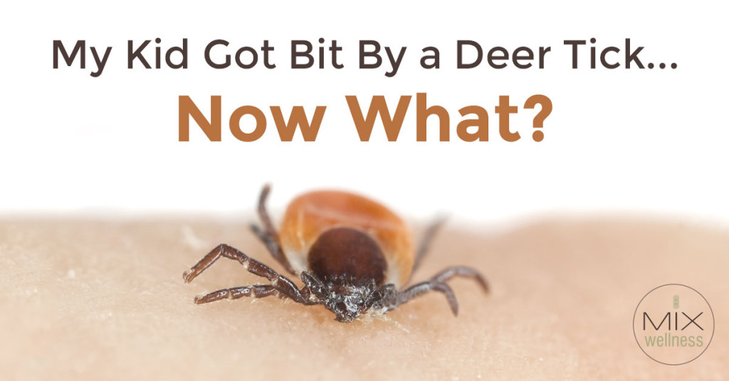 Steps to take immediately after discovering a deer tick bite, plus how to boost the immune system to fight the potential for #Lyme disease, from #MixWellness.
