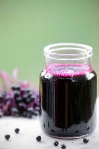 Elderberry syrup - part of our immune-boosting protocol in the wake of a deer tick bite